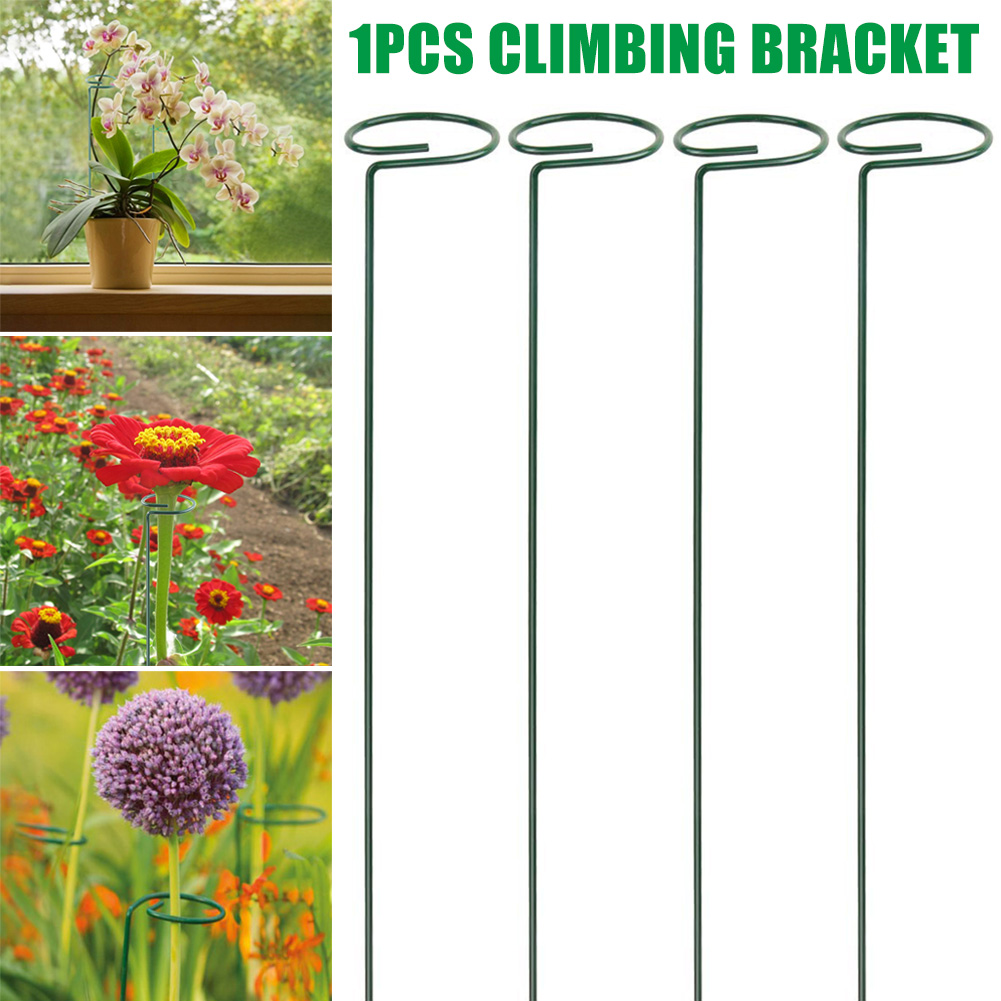 Ammonojo Plant Support Stake- 5 Pack Lily Tomatoes 40cm//15.8 inch Long Peony Rose Garden Flower Support Stake Steel Single Stem Support Stake Plant Cage Support Ring for Flowers