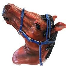 Bride de cheval réglable, collier de tête de protection assorti à l'entraînement, rênes en cuir durables détachables, équipement pratique d'équitation