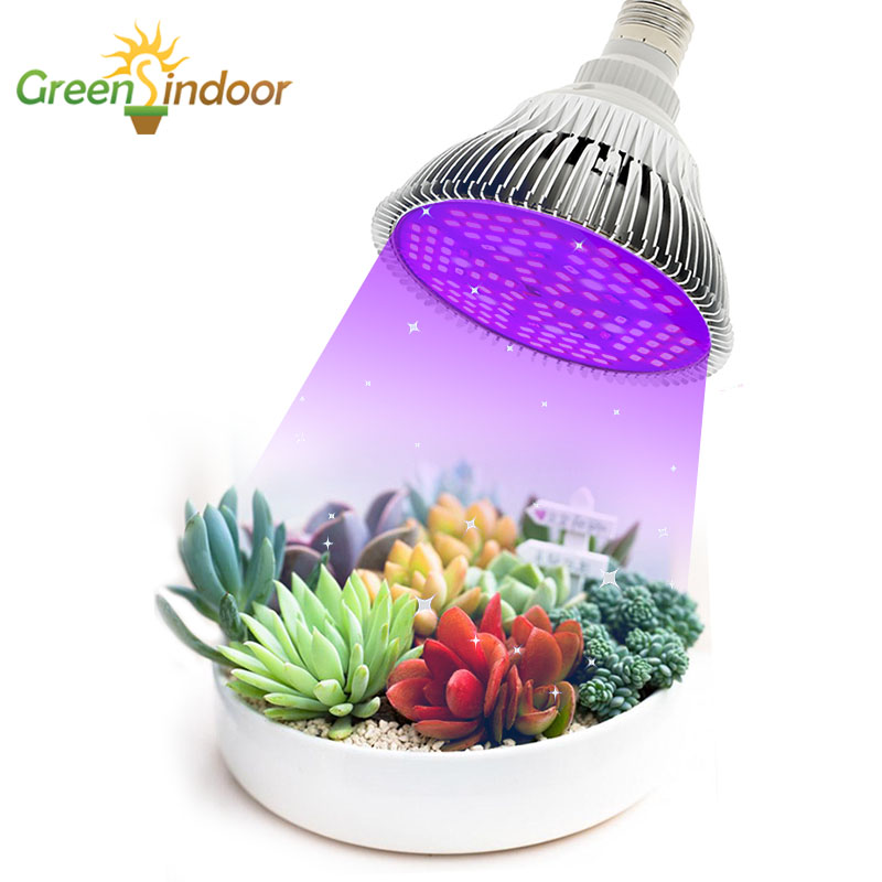 Indoor LED Grow Light E27 Bulbs 80W 50W 30W 10W Full Spectrum Phyto Lamp For Plants Lights For Flowers Succulents Indoor Plants