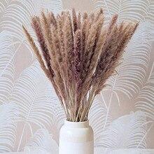 Decoracion Pampas Grass White Boho Dried Small Reed Home Decor Wedding Decoration Flores Artificiales Dekoration Valentine's Da