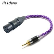 Haldane HIFI 10 سنتيمتر 2.5 مللي متر TRRS متوازنة الذكور إلى 4 دبوس XLR متوازن أنثى محول الصوت كابل ل AK240 AK380 AK320 DP X1 (الأرجواني)