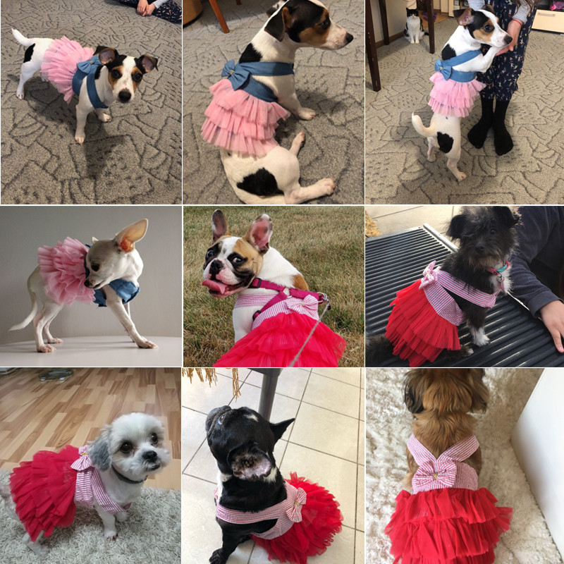Summer Dog Dress Pet Dog Clothes for Small Dog Wedding Dress Skirt Puppy Clothing Spring Fashion Jean Pet Clothes XS-L4