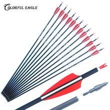 Flèches de tir à l'arc en fibre de carbone, plumes de 3 pouces, 28, 30 ou 31 pouces, 500 pointes d'entraînement et de vis, pour arc composé ou recourbé, nouveauté