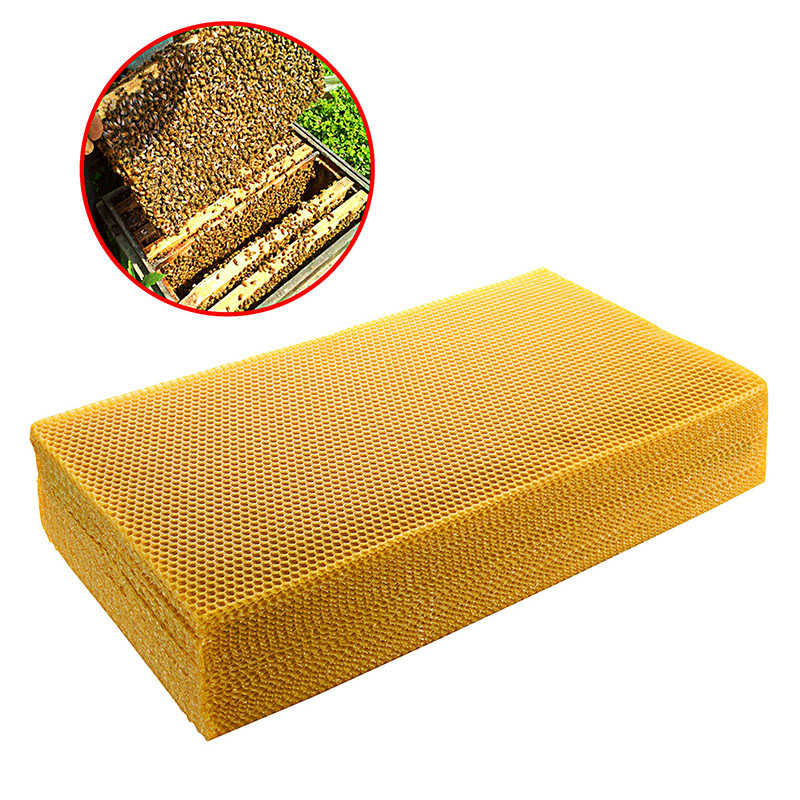 10pcs/lot Honeycomb Beeswax Foundation Beehive Wax Frames Base Sheets Bee Comb Honey Frame Beeswax Sheet 200*415mm