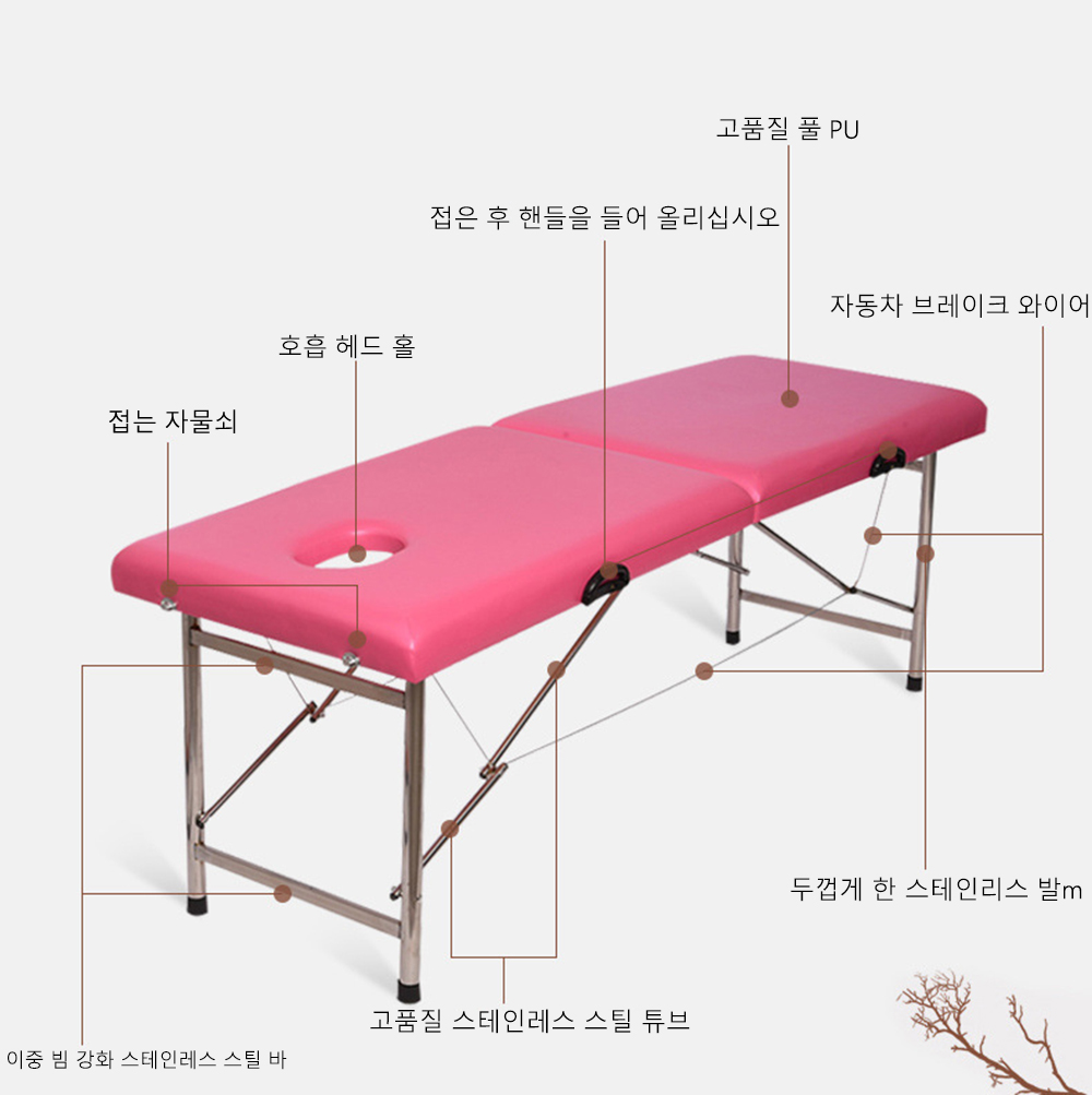 Portable Spa Massage Table Professional Folding Beauty Bed Lightweight Foldable with Bag Salon Furniture Aluminum Alloy