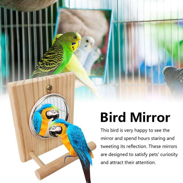 10 * 12 Cm Mirror Stand Pet Funny Parrot Bird Toy Mirror Toy Accessories  for Parrot Bird  Pet Parrot  Cage Pet Supplies 2