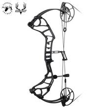 TOPOINT ARCHERY DAIBOW Acuity Bare Bow High Speed Hunting Compound Bow USA Gordon Composites Limb,BCY String