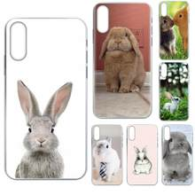 Soft Phone Covers Case Free Baby Rabbits Bunny For Galaxy J1 J2 J3 J330 J4 J5 J6 J7 J730 J8 2015 2016 2017 2018 mini Pro(China)