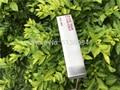 Высокое качество  sss350g T клюшки для гольфа  клюшки для гольфа 3233343636 дюйма  со стальным валом для гольфа  клюшки с головным убором  бесплатная д...