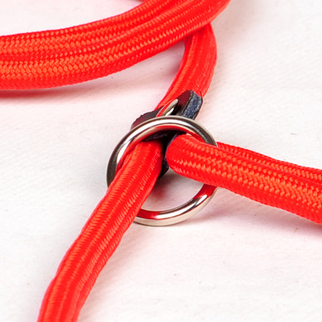 Quick Release Durable Soft Pup Collar  6