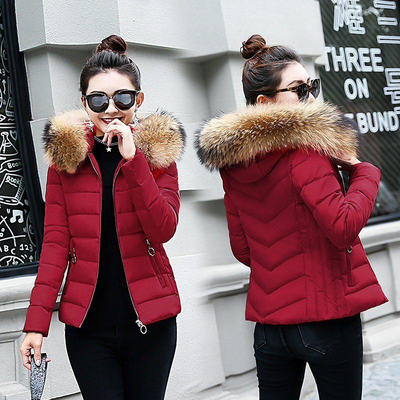 Off Season Coat Women's Short 2018 Autumn And Winter New Style Slim Fit Small Cotton-Padded Jacket Cotton-padded Clothes Cotton