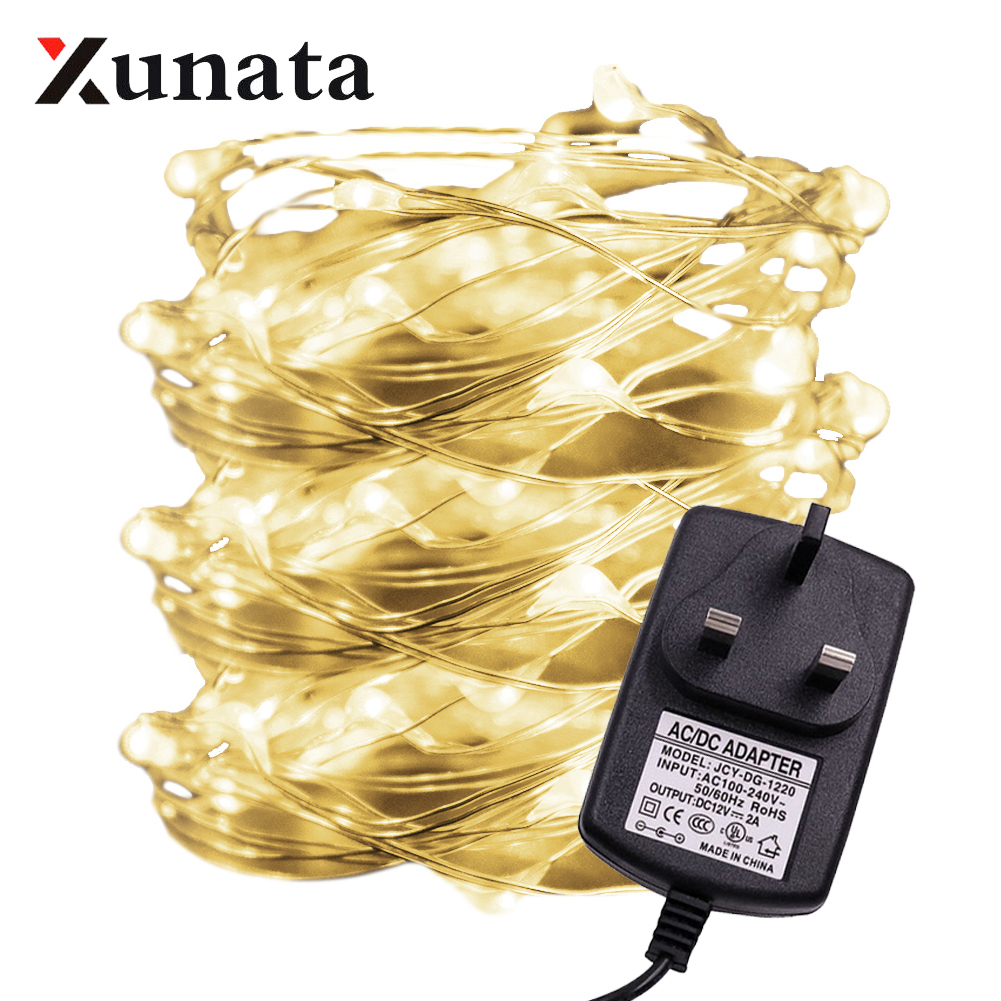 LED String Light Coop Wire Garland With 12V 2A Power Supply For Wedding Christmas Festival Party Home Decoration Lamp