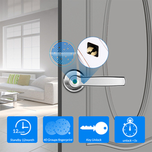 Smart Fingerprint Door Lock Electronic Keyless Entry Door Lock with Mechanical Key unlock for Door Lock Security