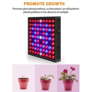 Full Spectrum Indoor LED Grow Lamp Quantum Board For Plant Growing Light Tent Fitolampy UV IR Red Blue 169/81 Led Flower Seed