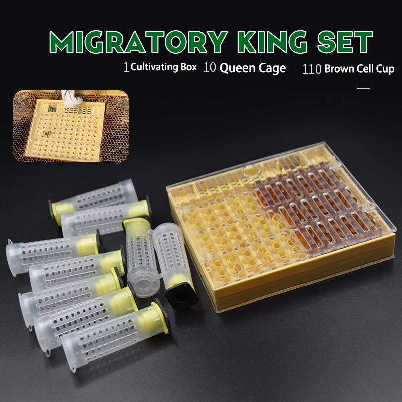 Beekeeping Tools Nicot Queen Rearing System Equipment Set Cultivating Box 110 Plastic Bee Cell Cups Cup Kit Queen Cage