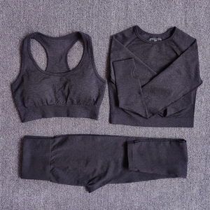 Women Seamless Yoga Set Fitness Sports Suits Gym Clothing Long Sleeve Crop Top Shirts High Waist Running Leggings Workout Pants(China)