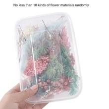 1 Box Real Dried Flower Dry Plants For Aromatherapy Candle Epoxy Resin Pendant Necklace Jewelry Making Craft DIY Accessories dry flower diy raw stone necklace