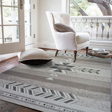 Тонкие светильник ковровые покрытия для гостиной большой ковер