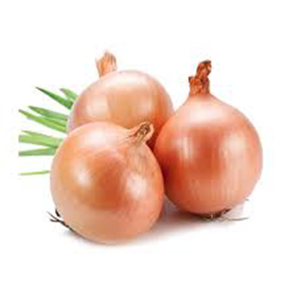 100pcs Yellow  Onion Seed Sower Vegetable Seeds Grow Plant Nursery DIY Garden