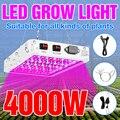 Светодиодный Панель полный спектр завод светильник 4000W 5000W Водонепроницаемый фитолампа 220V светодиодный растет светильник s чип Крытый парн...