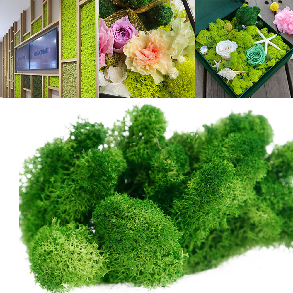 Online Shop Diy Artificial Green Plant Immortal Resin Fake Flower