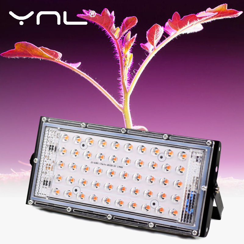 LED Grow Light Full Spectrum 50W AC 220V Phyto Lamp For Plants Tent Flower Seeding Lamp Indoor Outdoor Led Floodlight Grow Box 1