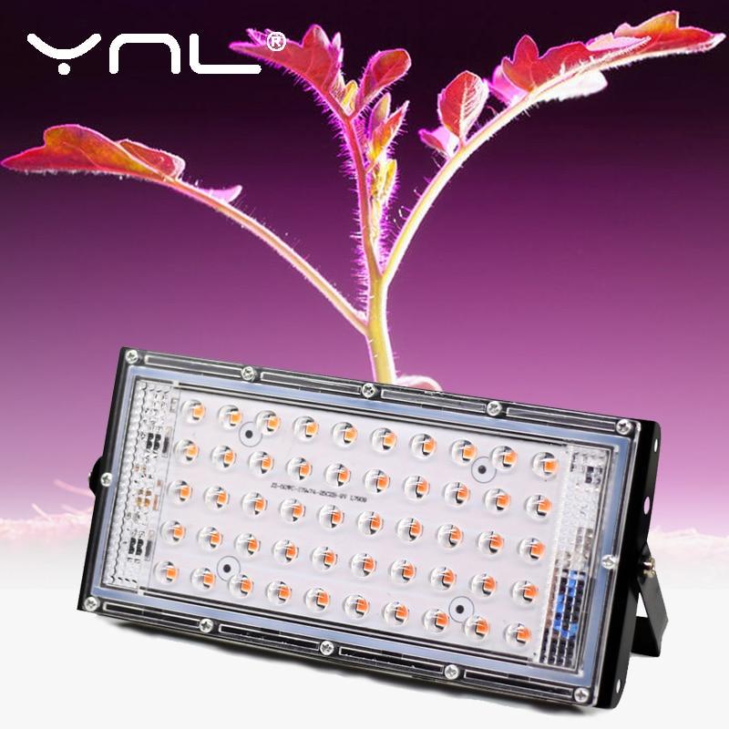 LED Grow Light Full Spectrum 50W AC 220V Phyto Lamp For Plants Tent Flower Seeding Lamp Indoor Outdoor Led Floodlight Grow Box(China)