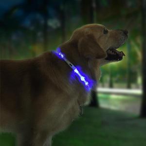 Image 2 - Beastie Star Pet świecąca obroża Anti pet lost LED oświetlenie ostrzegawcze USB ładowanie obroża ledowa obroża dla psa spersonalizowane bezpieczeństwo