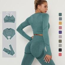 Sem costura yoga terno sexy ginásio terno feminino esportes roupa interior leggings calças apertadas roupas de treino roupas esportivas