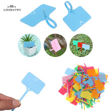 Tag-Ticket Garden-Labels Plastic 50pcs Sign Classification Sorting Writing-Plate-Board