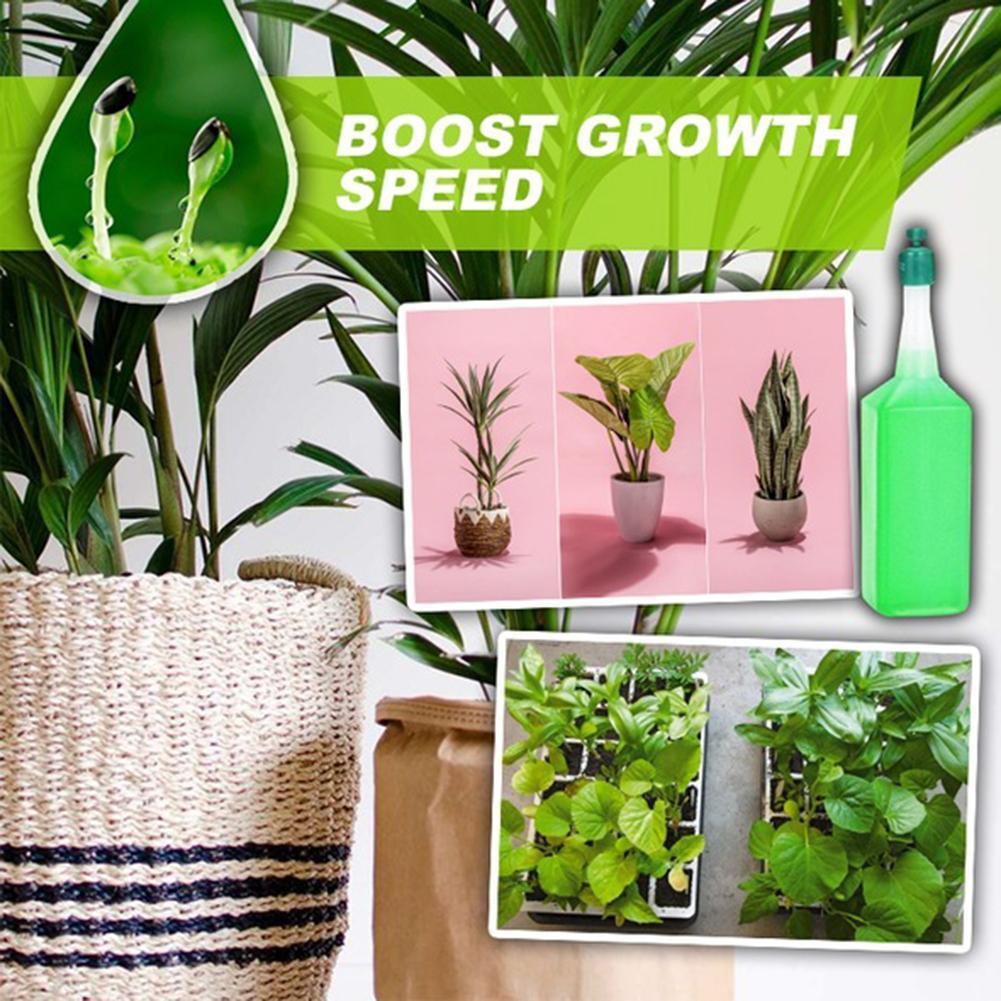 38ml plante hydroponique Solution nutritive engrais bambou fleur engrais en pot vert concentré engrais foliaire