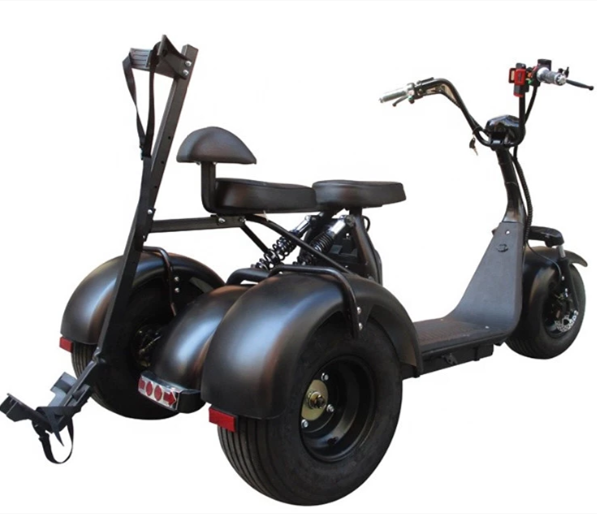 City Escooter 3Wheel Golf Cart EEC COC Approved Electric Cargo Tricycle Citycoco Golf Bag Cart Trike Motorcycle Electric Scooter 3