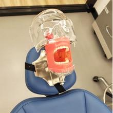 Modèle de tête simulateur dentaire, le modèle de tête peut être installé sur l'oreiller de la chaise dentaire, il est utilisé pour l'enseignement des dentistes