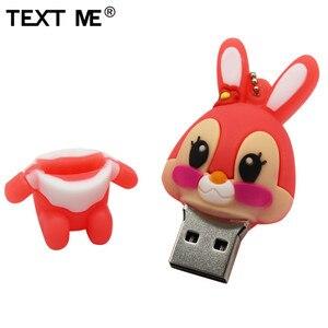 Image 5 - TEXT ME 64GB usb flash drive usb 2.0 4GB 8GB 16GB 32GB  pendrive cute gray pink model rabbit cartoon usb
