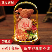 Real Rose In Glass Moss Teddy Bear Christmas Valentines Gift Everlasting Preserved Rose Flower Wedding Home Room Decor(China)