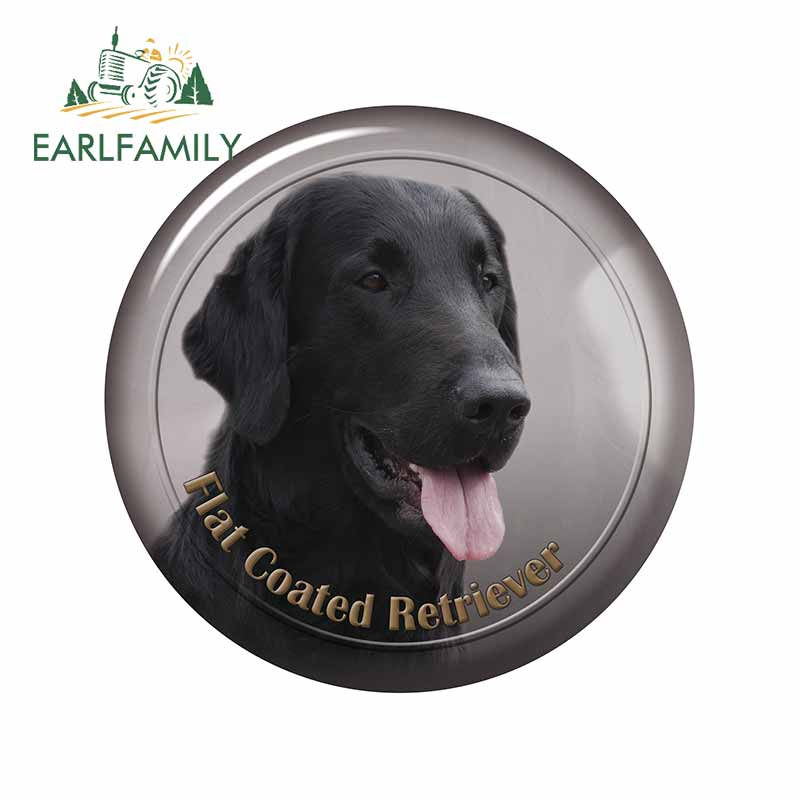 EARLFAMILY 13cm x 12.9cm for Best of Flat Coated Retriever Puppies Puppy Photos Car Stickers and Decals Occlusion Scratch