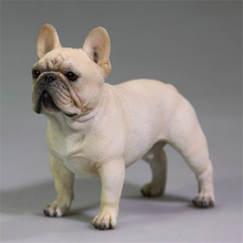 Mr.Z Studio 1:6Stand French Bulldog Bull Dog Pet Figure Animal Toy Collector Decor Gift Play Home Furnishing Small Ornaments