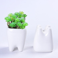 Teeth Flower Pot Simple Dehua White Porcelain Succulent Potted Tabletop Flower Pot Potted Ornaments