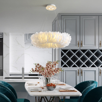 Modern simplicity creativity Hardware lampbody feather Restaurant decorate Chandelier E27 drawing room LED feather hanging lamp