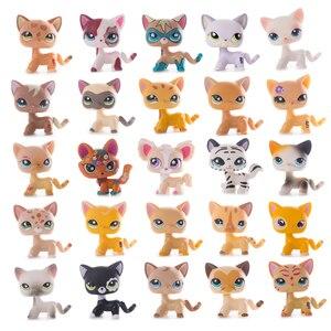 Tienda de mascotas pequeña y Original colección de gatos LPS, poco común de pie, gatitos viejos, modelo de figura de acción de alta calidad, juguetes, regalo para niños