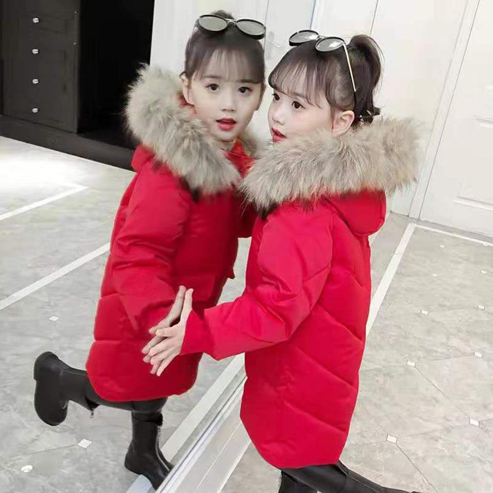 微信图片_20190802094202