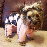 dog-clothes-winter-pet-coat-jacket-for-small-dogs-reflective-warm-fleece-puppy-dog-jumpsuits-chihuahua-yorkie-clothing-overalls