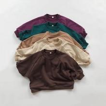 Spring Baby Boy Girls Sweatshirts Autumn Long Sleeve Tops Kids Toddler Boys Pullover Sweatshirt Sold Plus Size T-shirt Clothes