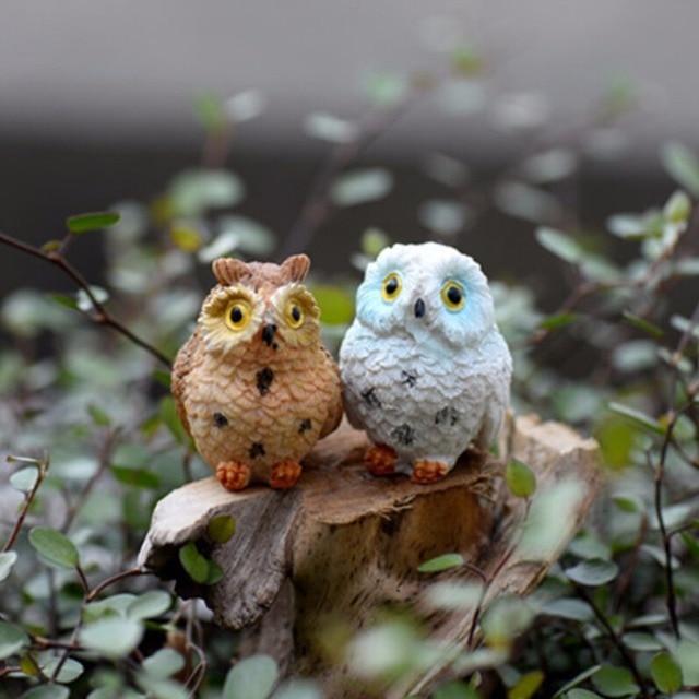 1/2pcs Owls Animal Figurines Resin Miniatures Figurine Craft Bonsai Pots Home Fairy Garden Ornament Decoration Terrarium Decor 2