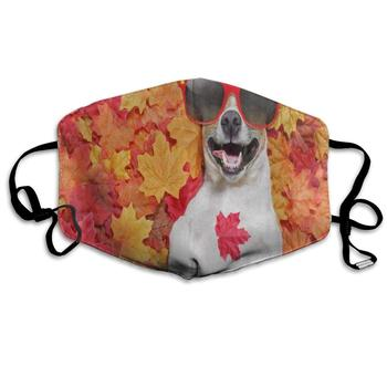 Red Maple Leaf Hipster Pug Dog Trendy Dust Mouth Mask Reusable Anti-Dust Face Mask Adjustable Earloop Skin Protection red dust novel