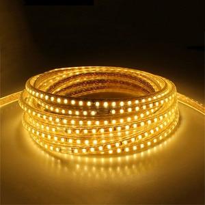 Image 2 - 220V su geçirmez Led şerit ışık ile ab tak 2835 SMD esnek halat işık, 120 Leds/M yüksek parlaklık açık kapalı Dimmer dekor