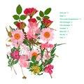 Тисненным изображением цветка микс сушеных Цветы DIY Искусство Цветочный узор; Коллекция, подарок, ремесло, сделай сам, BOM666