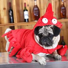 Dog Cat Costumes Pet Interesting Cosplay Costume for Dogs Puppies Funny Performance