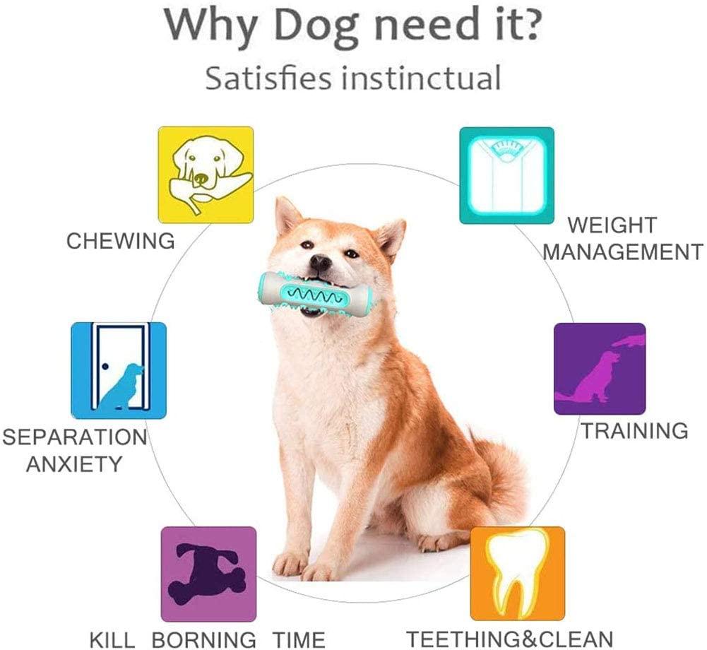 dog-chewing-stick