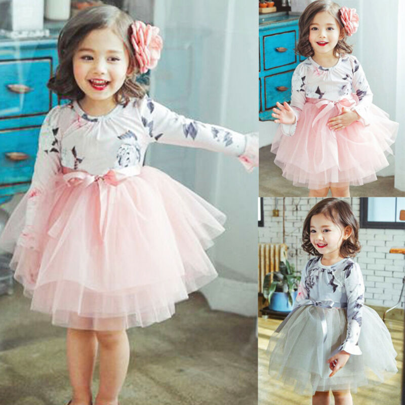 Lively Infant Baby Girl Long Sleeve Lace Tulle Embroidery Princess Dress Clothes